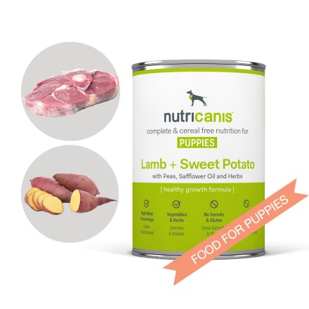 Wet food for puppies and adolescent dogs: 400g Lamb + Sweet Potato